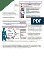 Conceptos Básicos Biotecnología Aplicada a La Salud