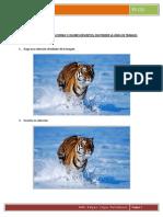 PracticaD.pdf