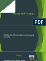 johnsonb plants and animals