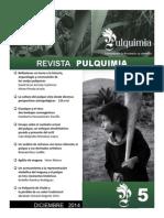 Revista Pulquimia No 5