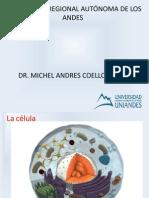 Conf 2 BCM. Tema celulas y enlaces quimicos.pptx