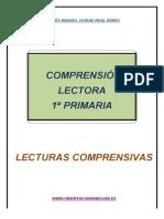 Comprensión Lectora Primer Ciclo de Primaria Fichas 1 5