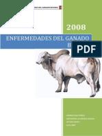 Enfermedades Del Ganado Bovino 2008