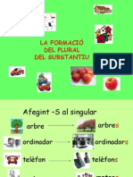 Forma Plural
