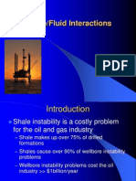Shale Fluid Interaction