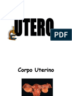 Patologías del Utero