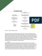 Patofisiologi PJK