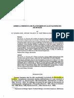 Sobre la presencia de Flavonoides en algunos tipos de musgo
