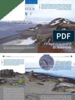 Fauna y Flora en la península de Byers