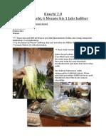 Kimchi 2.0.pdf