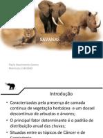 Ecologia Seminário