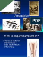 Amputation 2008 Version 4