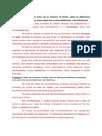 Atividade Senana 2 - Anatomia e Orfologia Vegetal