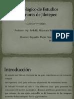 aplicacionvectores-130306214136-phpapp02