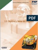 1.0 Objetivos y Metas Del Programa