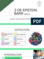 Virus de Epstein-barr (Hhv-4)