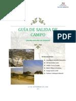 Guía de Salida de Campo Final