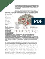 Neurotransmisores en el AMOR