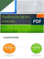 La Clasificacion de Los Animales 1