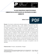 Os Princípios Constitucionais Ambientais