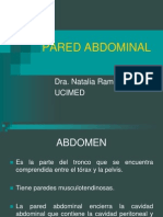 Pared Abdominal