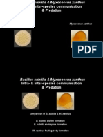 Microbial+Diversity+11.18.2014+Mueller.pdf