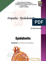 orqiepididimitis - copia.ppt
