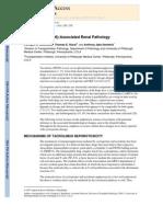 Tacrolimus (FK506)-Associated Renal Pathology
