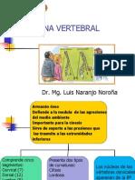 Col Vertebral  2013.pdf
