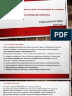 Institutii Si Integrare Europeana-Gradinaru Andrei