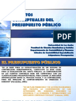 Tema 4. Aspectos Conceptuales Del Presupuesto Público.