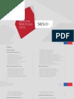 Informe Matricula 2013 REFERENTE
