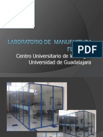 P-LABMANFLEX2011.pdf