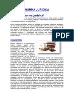 Norma Juridica Oficial