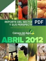 Reporte Agro y Perspectivas 2012