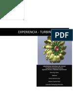 Informe Turbina Pelton 2014 - b