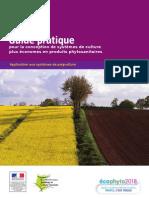 Guide - Systeme de Culture Econome en Prduits Phytosanitaire