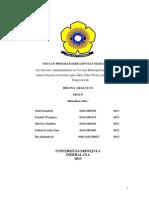 Proposal Pkmp Daun Salam