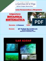 Clase II Las Algas