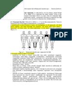 5 Examen Somatoscopic Segmentar Fata