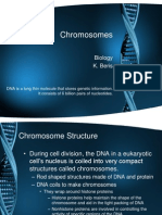 chromosomes notes