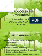 EMBRIOLOGI SISTEM UROGENITAL_2.ppt