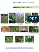 Field Guide Rapid Assessment