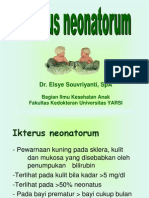 5. Hiperbilirubinemia