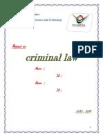 Criminal Law القانون الجنائي