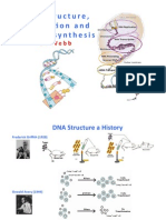 Webb - DNA 1