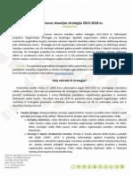 LS Strategijos 2015-2018 Projektas