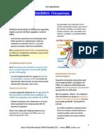 DCV Isquémico Fisiopatología PLUS MEDIC A
