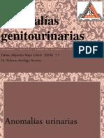 anomalias genitourinarias