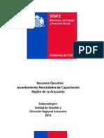 Resumen Ejecutivo Levantamiento Necesidades de Capacitación Región de La Araucanía 2011